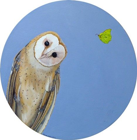 Barn Owl and Brimstone - signs of spring