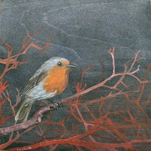 Robin on Red Bush  SOLD