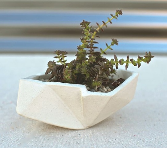 small white geometric planter