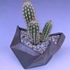 Charcoal Matte Geometric Planter