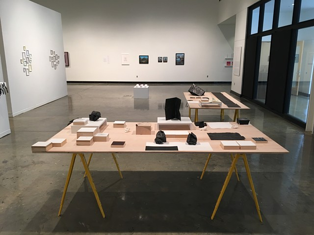 This arrangement was a set up for the 2016 Faculty Exhibition in the Illges Gallery