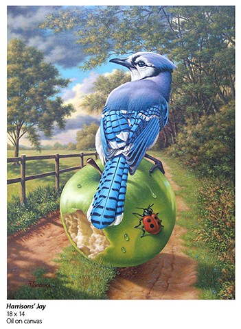 oil painting by Phill Flanders of blue jay