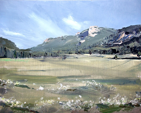 "Colorado. Rocky Mountain National Park 16""x20"" Oil"