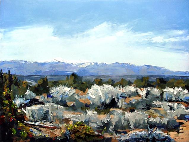 "La Plata Mountains Colorado, New Mexico state line. 27""x36"""