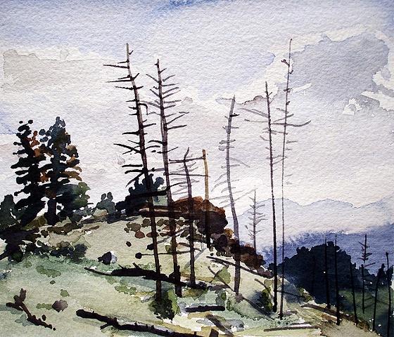 """Colorado. Mt. Falcon  7""""x8"""" Watercolor"""