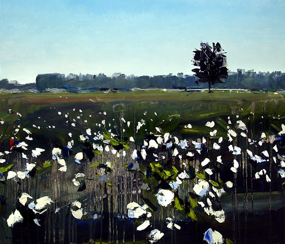 "'North Carolina Cotton Field'  24""x28"" Oil on wood"