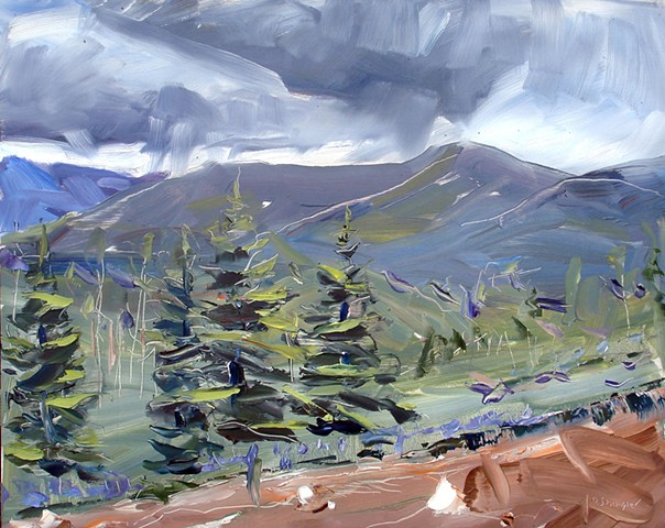 "'Tabernash Clouds Colorado'  16""x20"" Oil on wood"