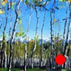 "'Aspen Forest. Telluride, CO'  36""x48"" Oil on wood"