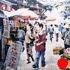 "Kunming, China. Bird and flower market ""20""x30"" Oil"