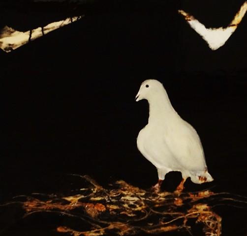 """""""Bird III"""""""