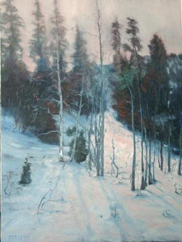 """""""Snow Basin Shadows"""""""
