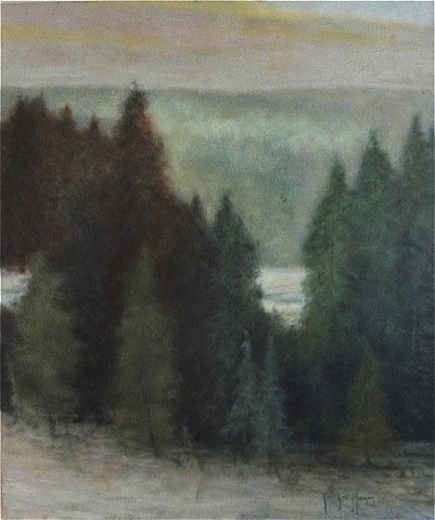 """Pine Evergreen in Winter"""