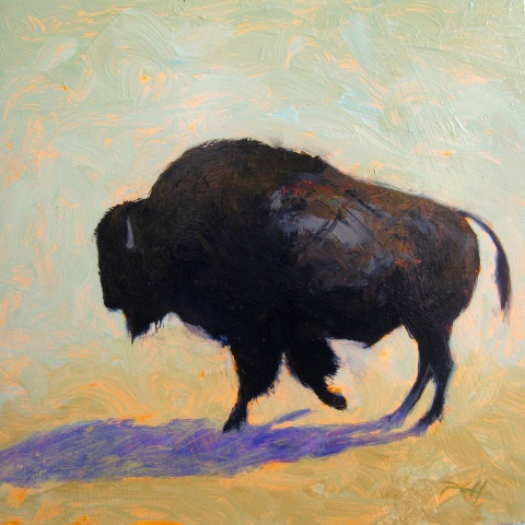 """""""Buffalo Study 2"""""""