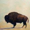 """""""Buffalo Study 1"""""""