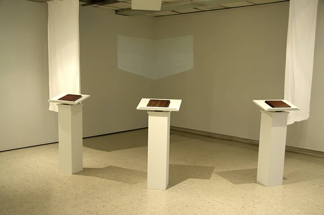 Inside a Block of Wood (installation Shot)