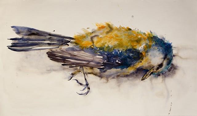 Urban Bird no. 21