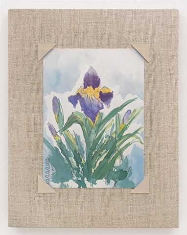 Watercolor of an Iris