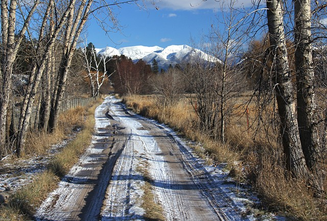 December along a country road at the north end of Flathead Lake, Montana