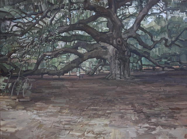 Angel Oak (overcast)