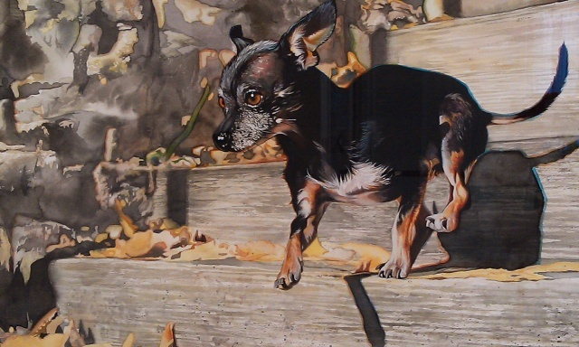 Nude Descending a Staircase (Toby Chihuahua)