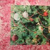 Upcoming Exhibition:  Michael Gaughan, Fluorescent Glaucoma in a Christmas Terrarium