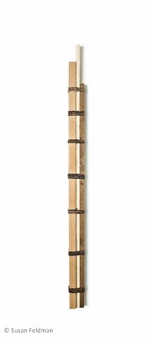Ladder #6