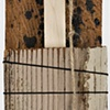 Ladder #61 detail