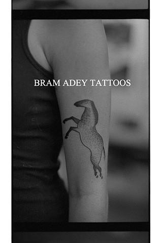 Horse - Bram Adey - 2015
