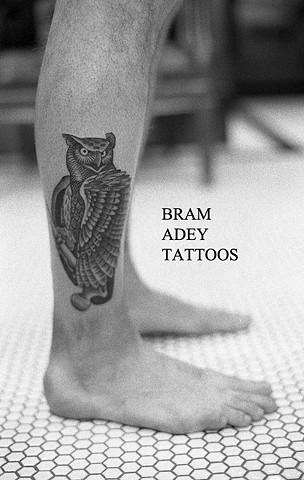 Owl - Bram Adey - 2015