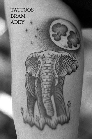 Elephant - Bram Adey - 2015