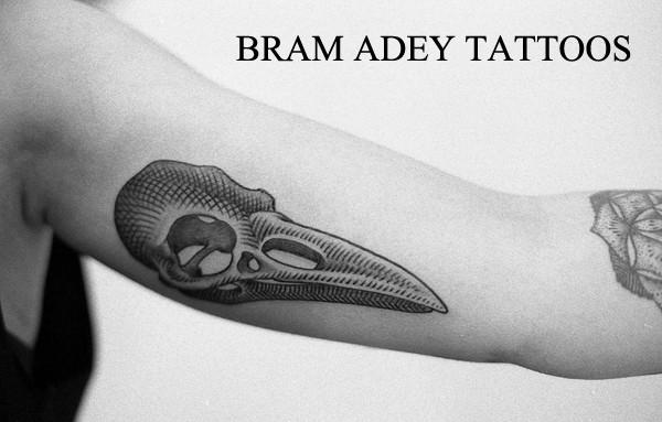 Crow Skull - Bram Adey - 2015