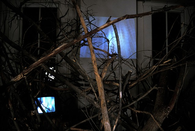 Senior Art Exhibition- Video Installation