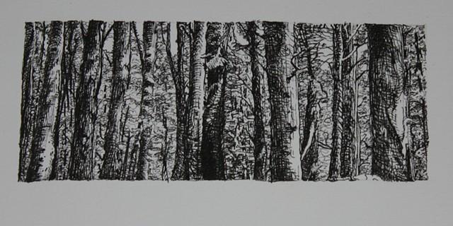 (I) Eye 90 Overexposed detail third row left