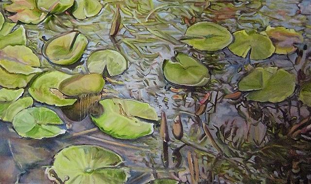 Shallow Pond (Detail)
