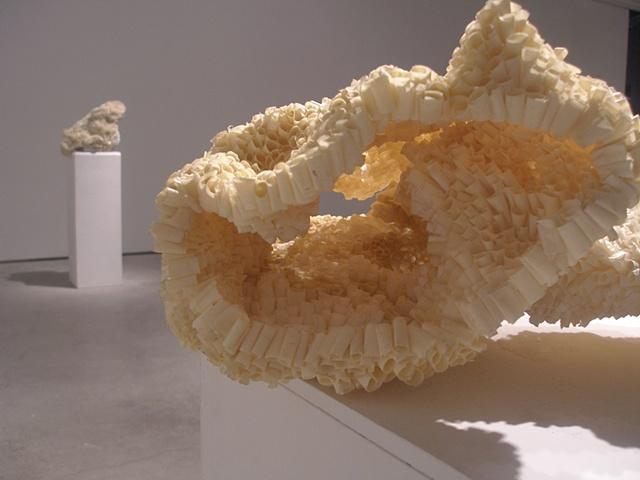 large organic sculptural forms