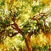 Plantation Tree Study 1
