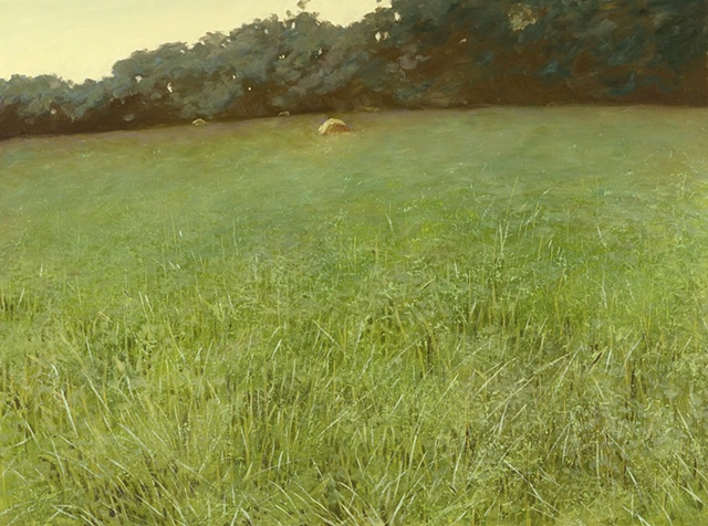 Meadow Series 2009-2012