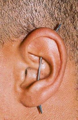 ear project piercing by tatupaul
