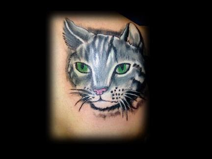 realistic cat tattoo by tatupaul