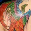 pheonix tattoo by tatupaul