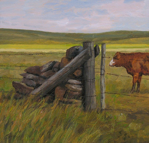 Landscape with Hereford cow and rock jack fencepost, gate.
