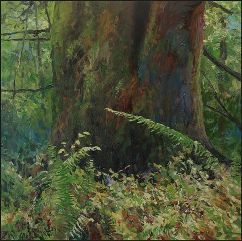 oil, realist, landscape, forest, ferns, trees, woods, nature, representational