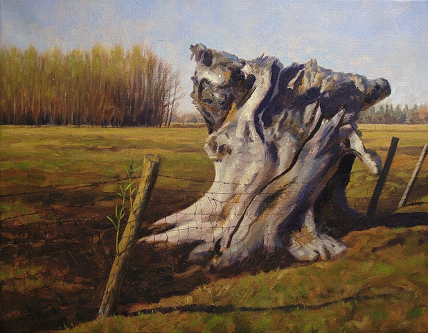 Early spring landscape with fencerow, large dead willow stump.