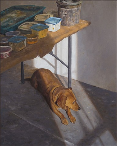 dog, pet, animal, studio, table, paint, sunlight