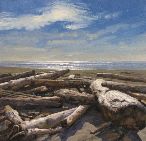 Ocean, beach, shore, driftwood, logs, sunlight, backlit.