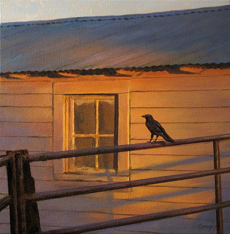Early morning light on white shed with window, crow on fence rail in foreground