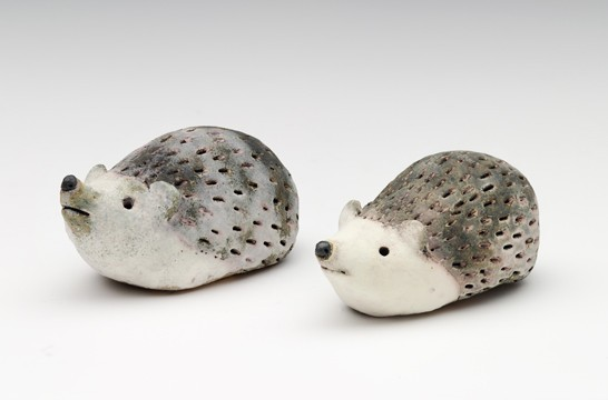 Two hedgehogs