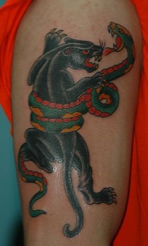 Panther/Snake battle
