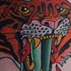 Tiger/Dagger