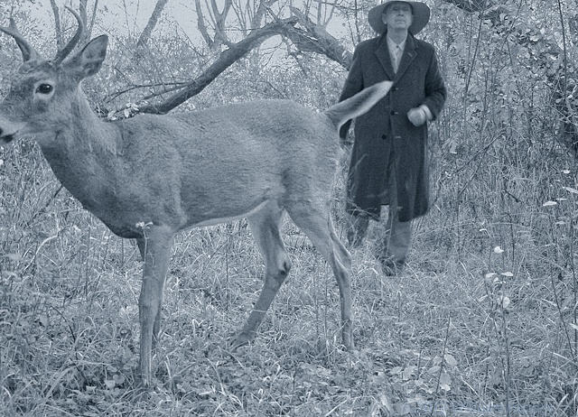 jakob and the buck 1